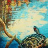 Pond Turtle Basking in the Sun reduced
